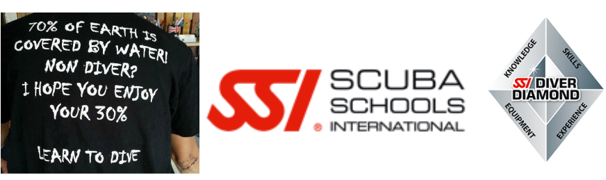 WELCOME TO THE SSI DIGITAL REVOLUTION!With Digital Learning, you can study at your convenience anytime or anywhere. Try it on your computer, smart phone or ...